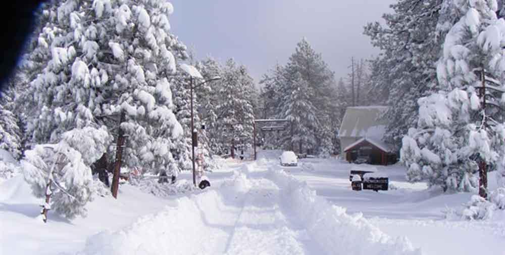 Cerrarán Parque Nacional Sierra San Pedro Mártir por pronóstico de nevadas