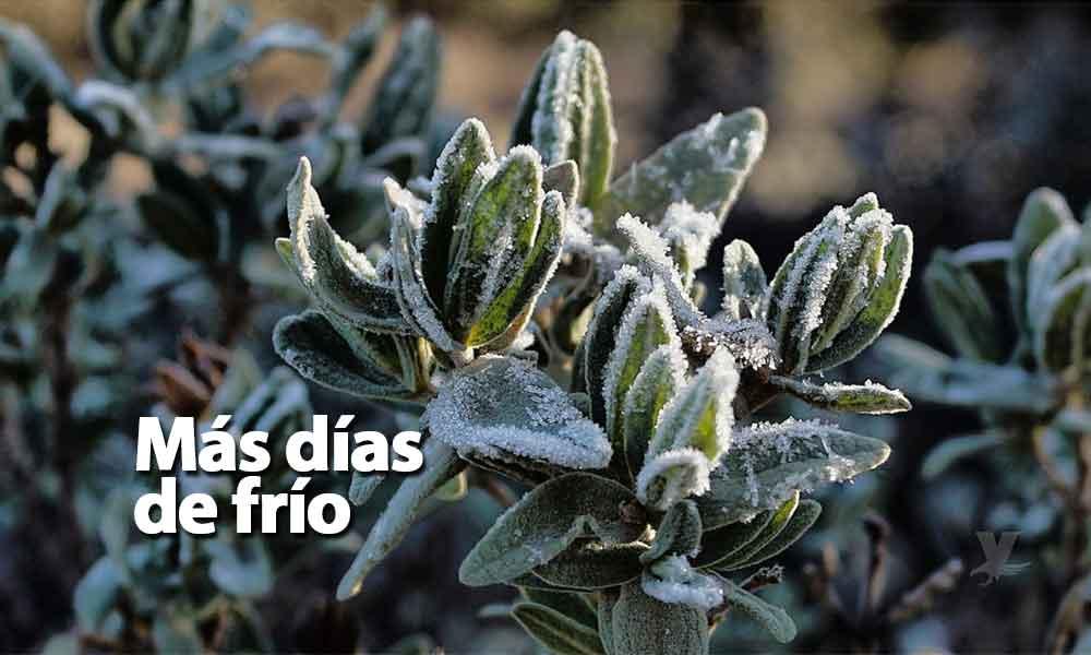 Pronostican 10 días más de frío y lluvias para Baja California
