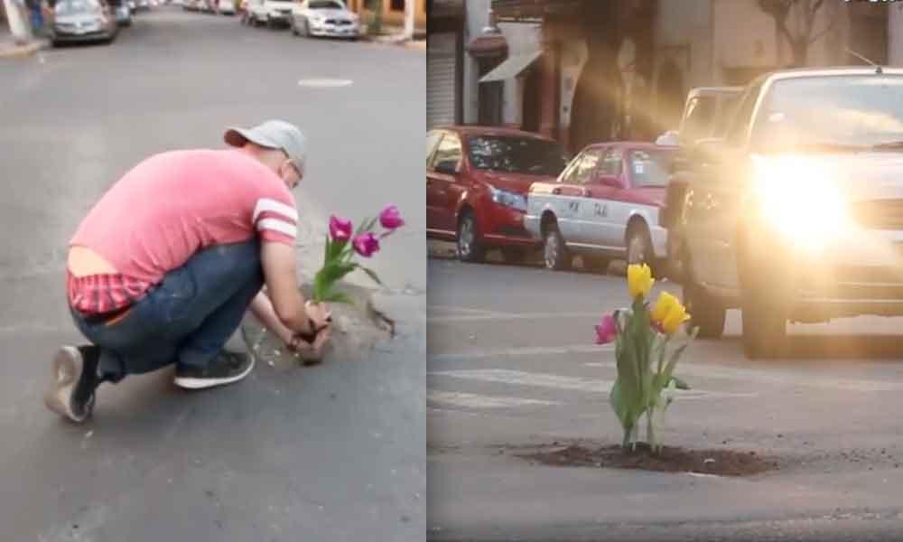 Plantan flores en baches sobre las calles