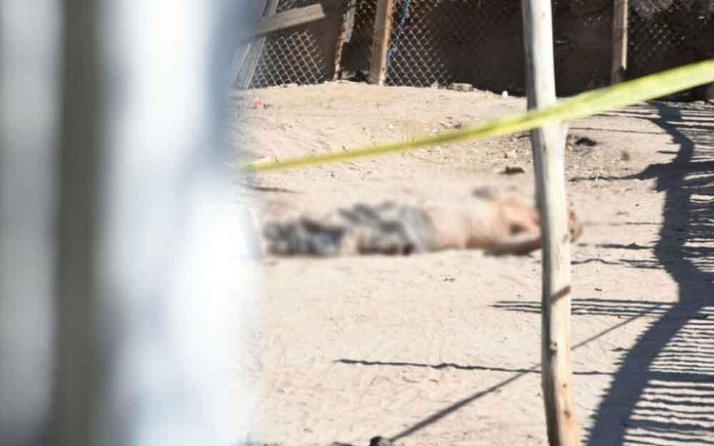 Localizan cuerpo sin vida en predio abandonado en Mexicali