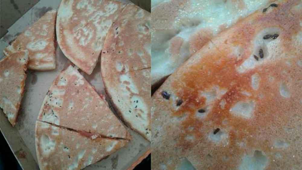 Cierran Restaurante Little Caesars tras encontrar excrementos de ratón en pizza