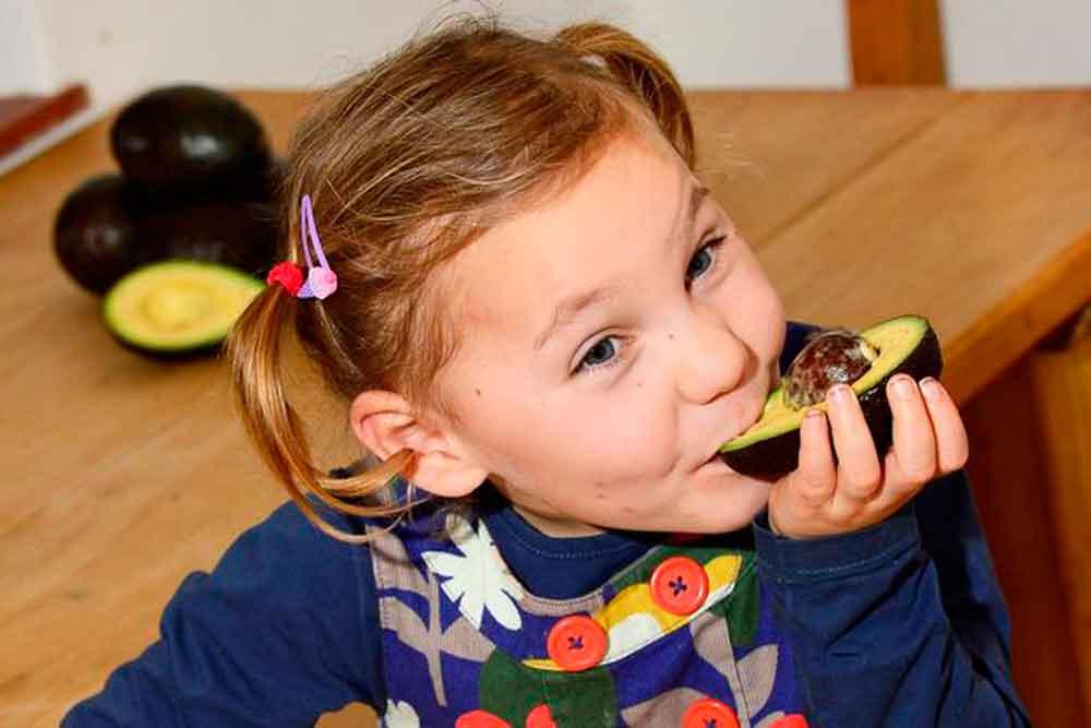 Aguacate reduce convulsiones en niña epiléptica