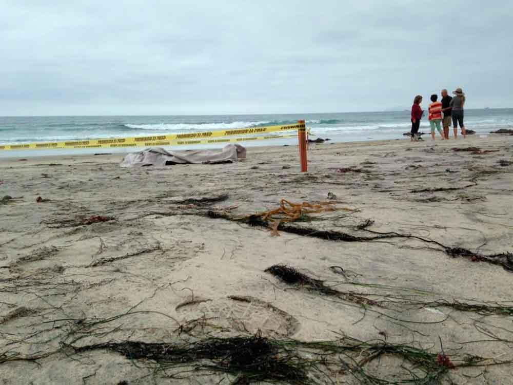 Localizan cadáver en playas de Rosarito