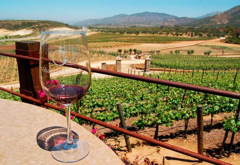 Valle de Guadalupe sustituye a Napa California como el lugar más visitado: Venue Report