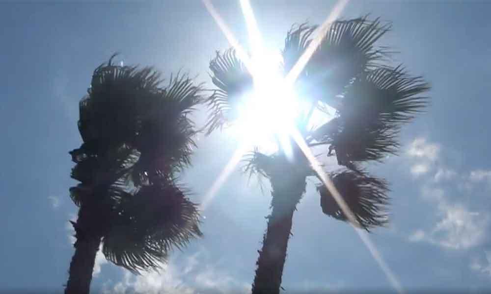 Mañana domingo fuertes vientos de hasta 80 kilómetros por hora en Tecate