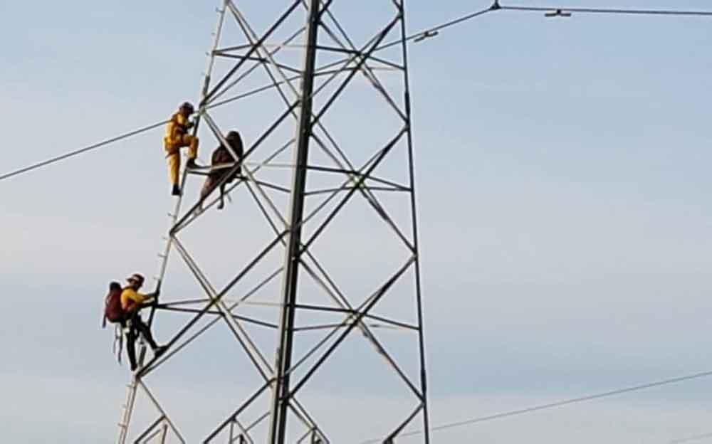 Hombre intenta suicidarse lanzándose de torre de alta tensión en Tijuana