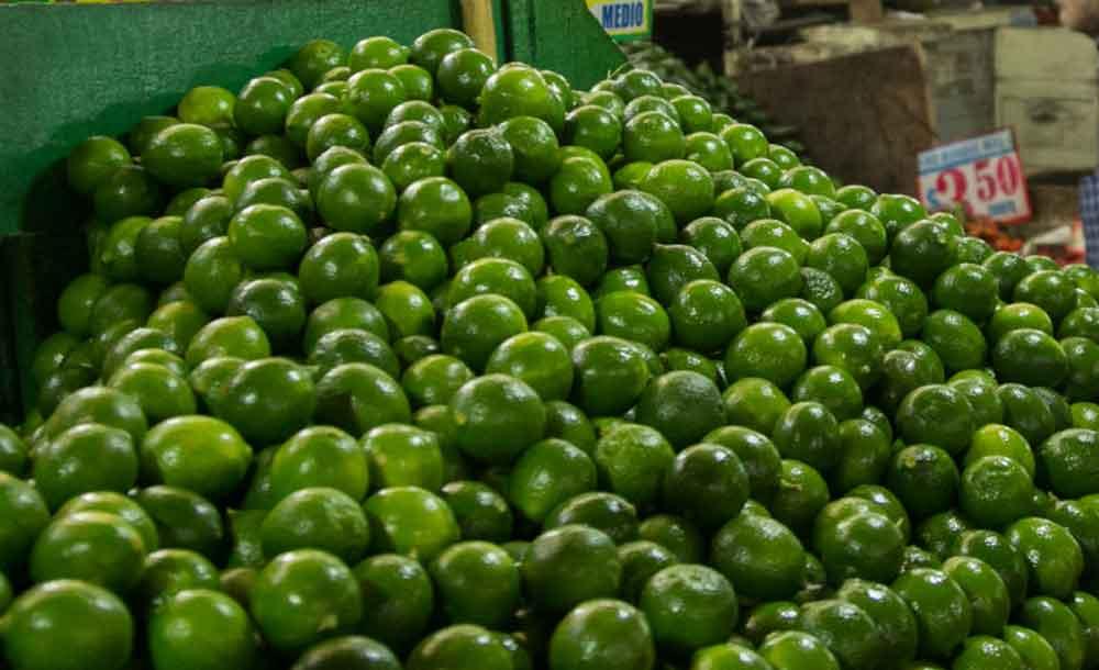 A la alza el precio del limón en mercados del país