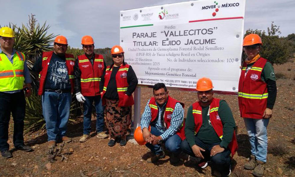 Obtiene certificación Unidad Productora de Germoplasma Forestal en Baja California