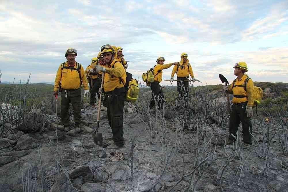 Reconocerá CONAFOR a brigadas y técnicos especializados en el manejo del fuego de todo el país