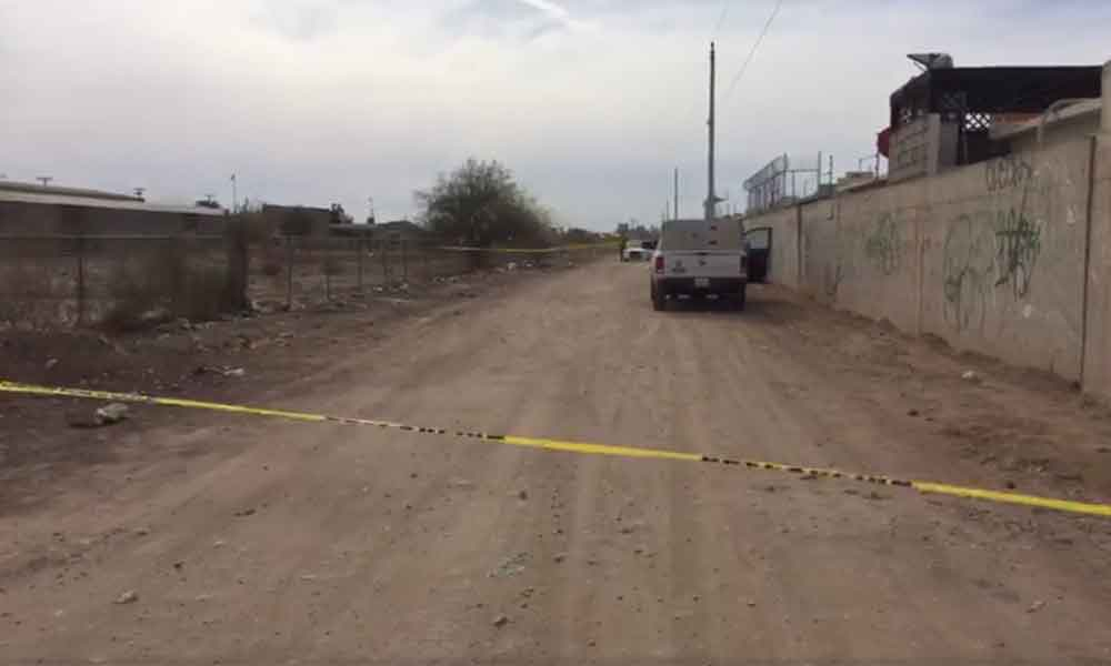 Localizan cuerpo de mujer colgado de un árbol en Mexicali
