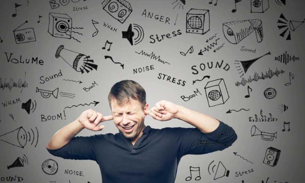 Contaminación por ruido puede causar daños irreversibles