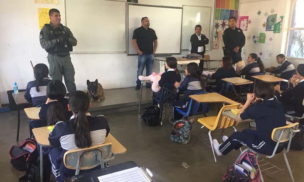 Realizan operativo mochila a 442 alumnos de secundaria en Tijuana