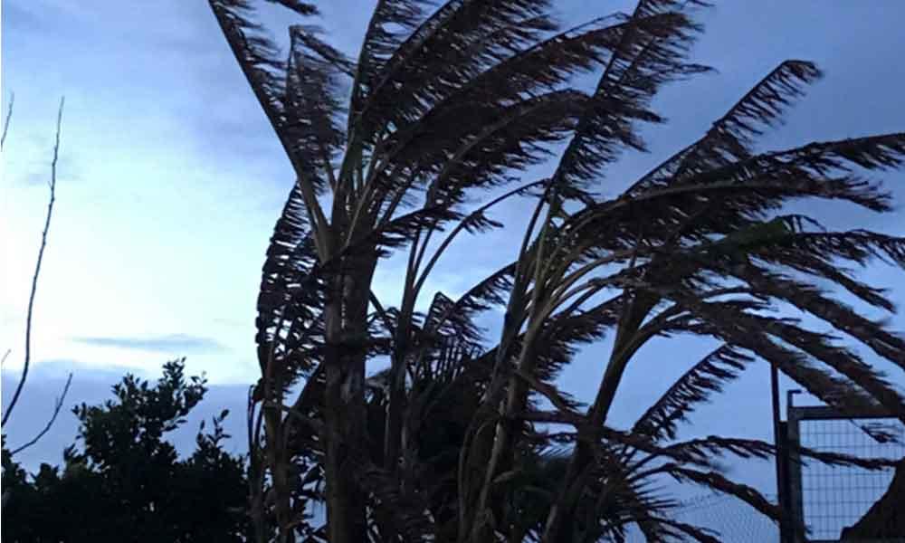 Prevén fuertes vientos de hasta 60 kilómetros por hora esta noche en Baja California: CONAGUA