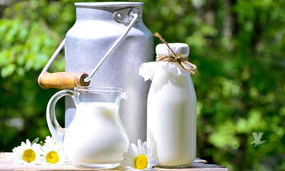 Expertos en nutrición advierten de los peligros de dietas sin lácteos