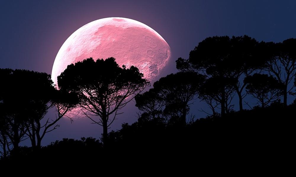 Luna rosa iluminará abril; te decimos cuando