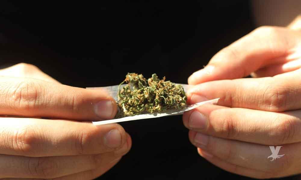 La juventud en Baja California dice que la marihuana no es dañina