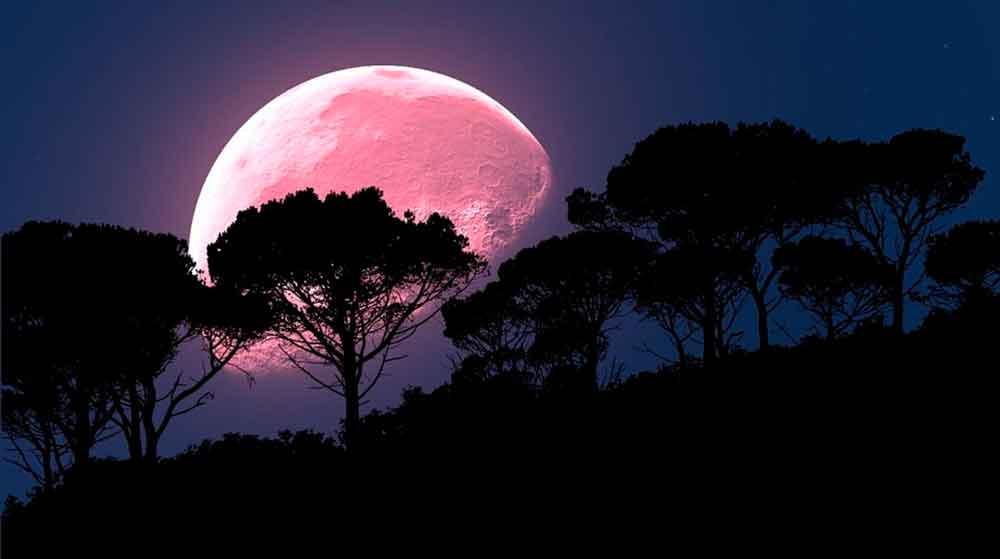Luna Rosa iluminará el cielo en abril