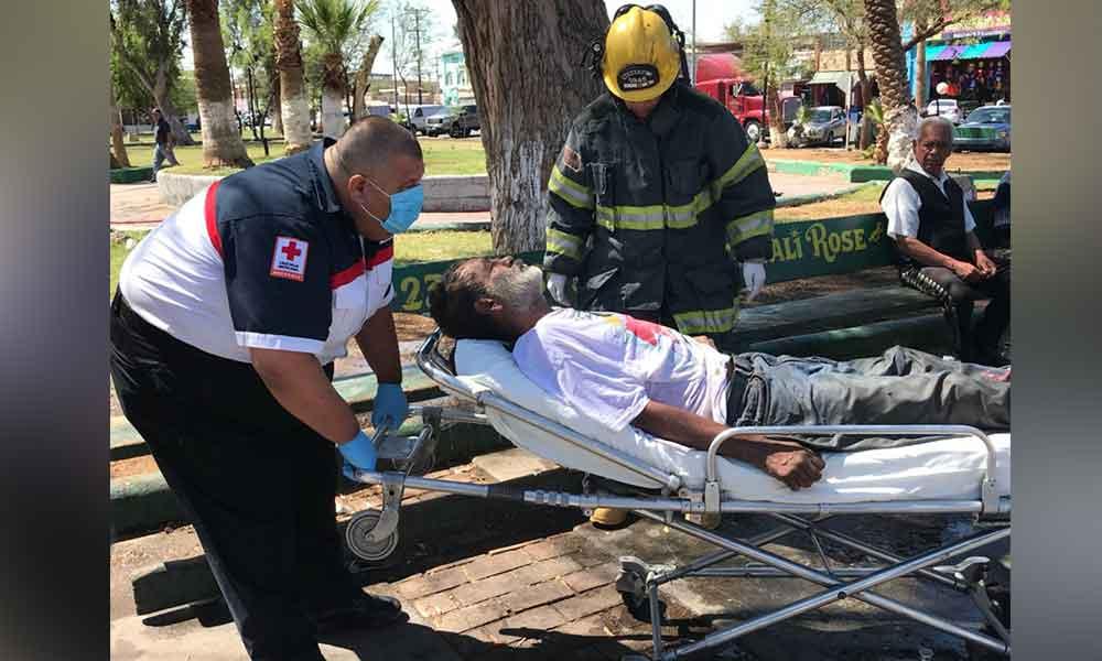 Brutal ataque de abejas dejó varios lesionados en Parque de Mexicali