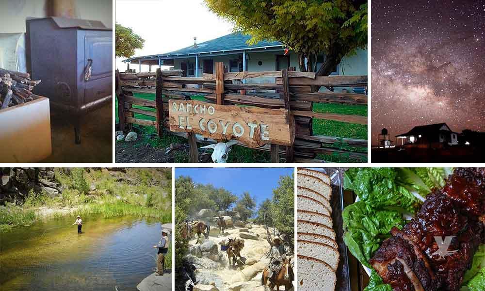 """Conoce las maravillas naturales que ofrece Rancho """"El Coyote"""" en Baja California"""