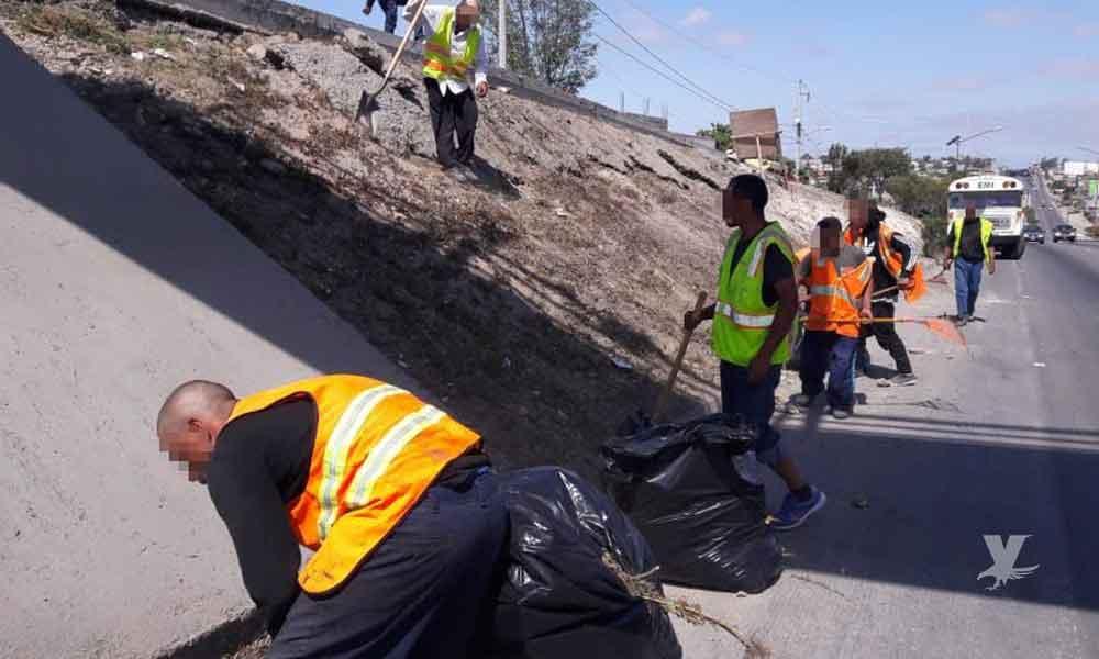 Para evitar prisión, infractores recolectan más de 10 toneladas de basura en Tijuana