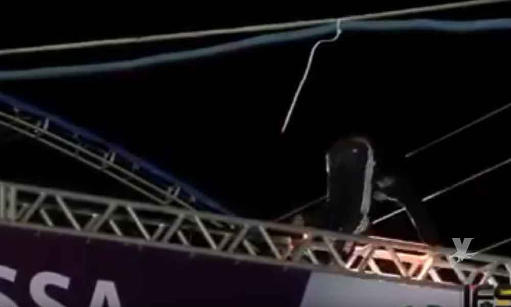 (VIDEO) Un espectador murió electrocutado en un concierto por subir al escenario
