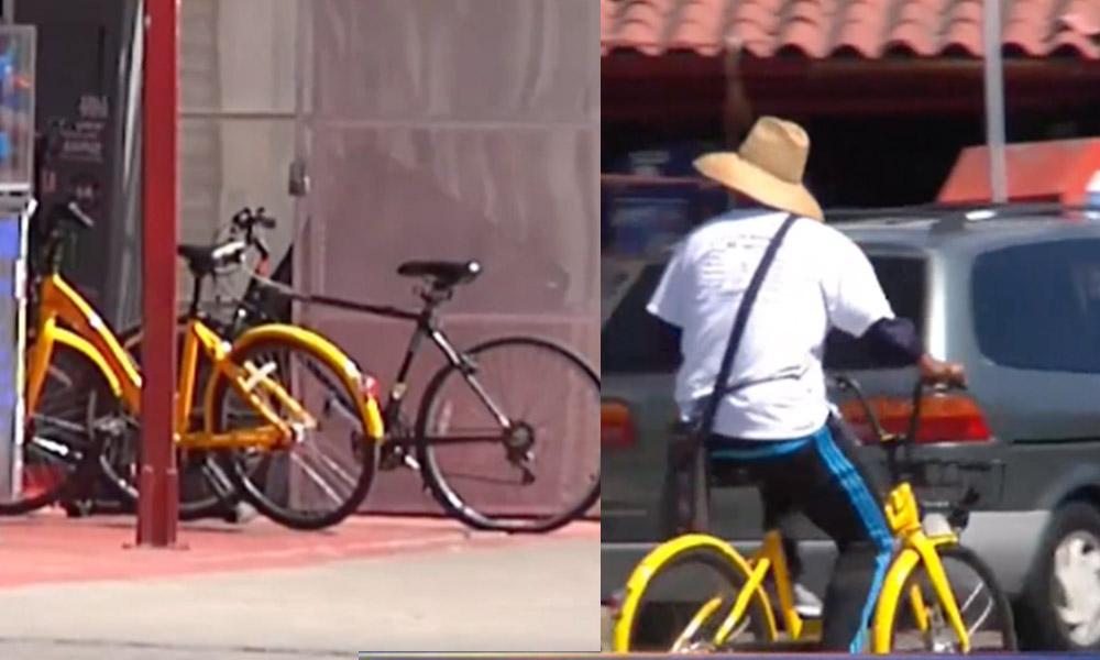 """Denuncian robo de Bicicletas Compartidas """"Lime Bike"""" y """"Ofo""""  en San Diego"""