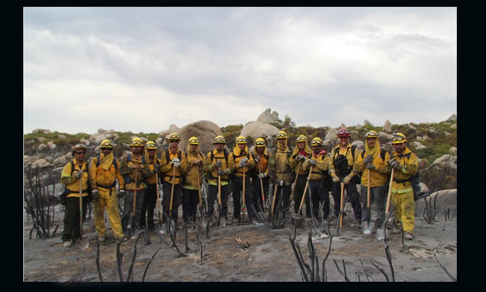Activan a 110 brigadistas rurales de incendios forestales en Baja California