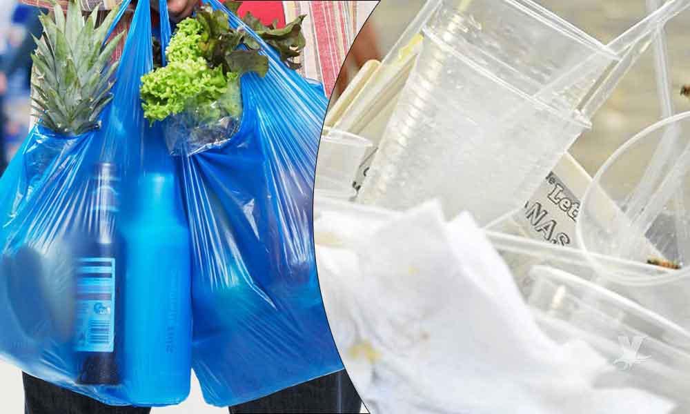 Aprueban prohibir el obsequio de bolsas y utensilios plásticos en Ensenada