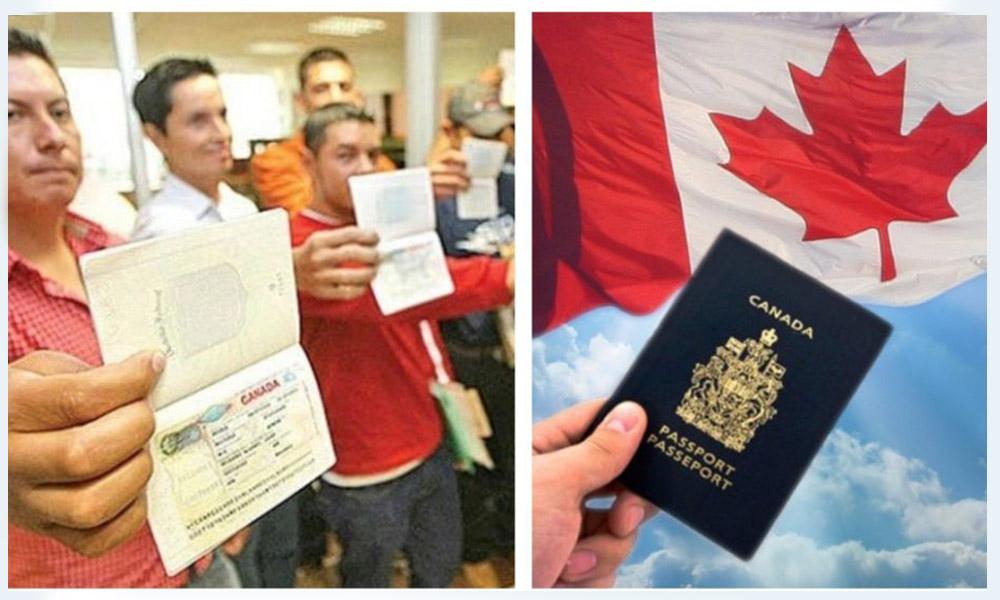 Ofrecen 500 vacantes de empleo en Canadá para Mexicanos