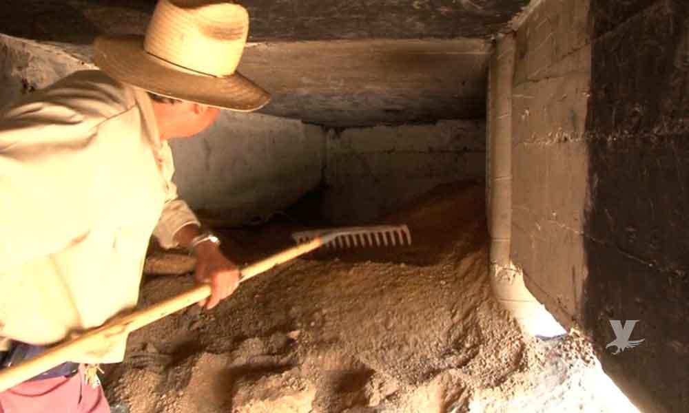 (VIDEO) Indigentes cavaron un hoyo y debilitaron los cimientos de un puente en Ensenada
