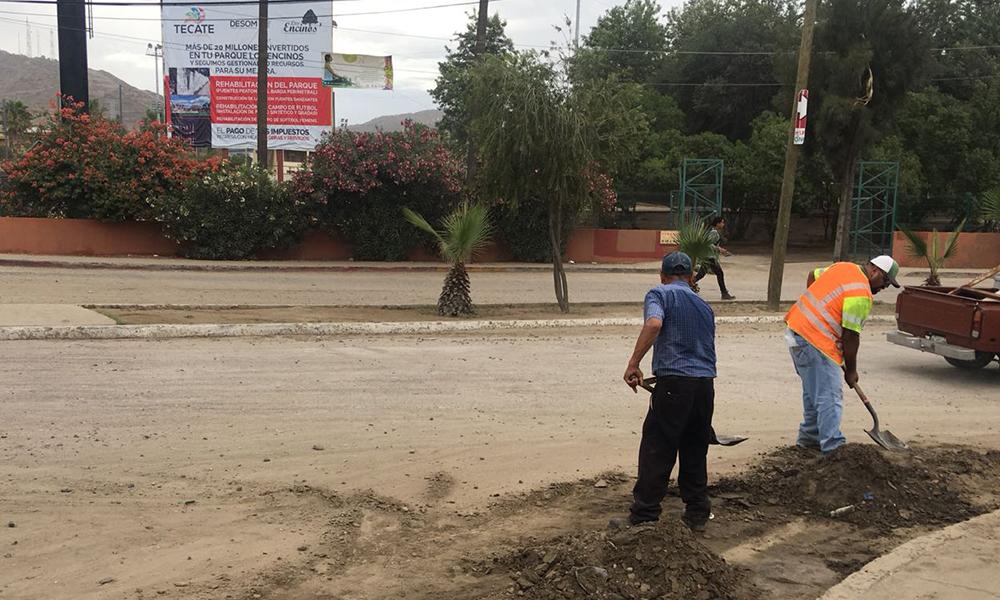 Limpian los circuitos viales de mayor circulación en Tecate