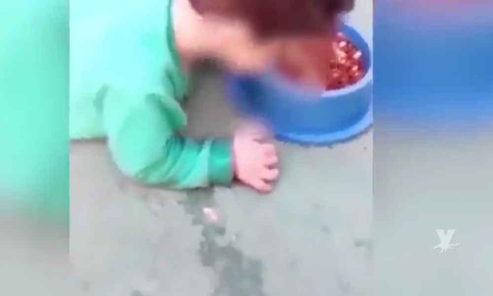 (VIDEO) Madre obliga a su hijo de 2 años a comer alimento para perro, sólo por tener una discapacidad
