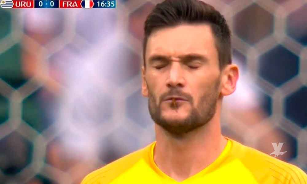"(VIDEO) Ya tiene Twitter la libélula que ""besó"" al portero de Francia Hugo Lloris"