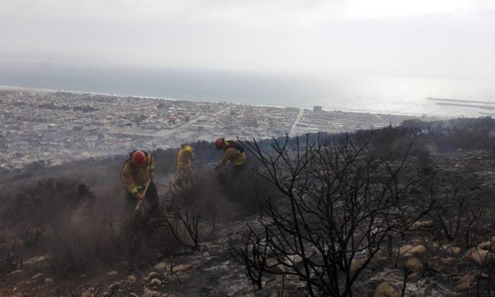 Informan que el incendio forestal en Valle Dorado de Ensenada fué apagado