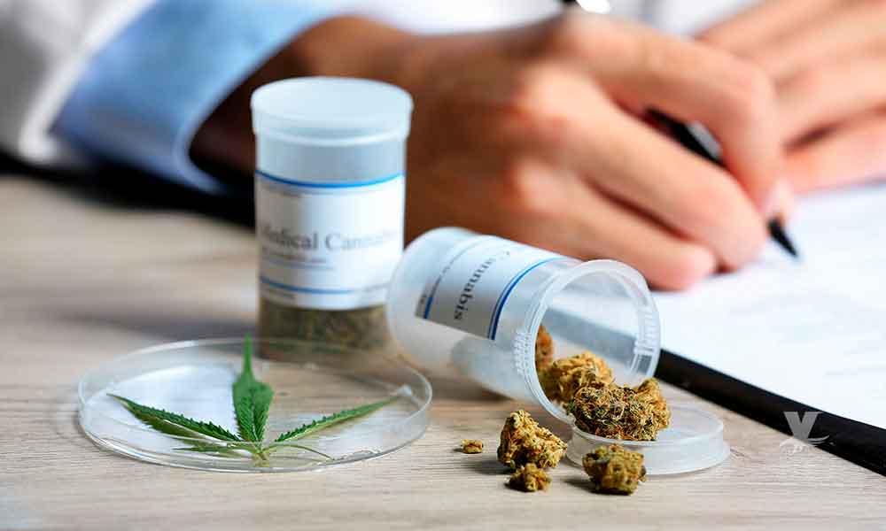 San Diego produce marihuana medicinal para ayudar 4 niños de Baja California
