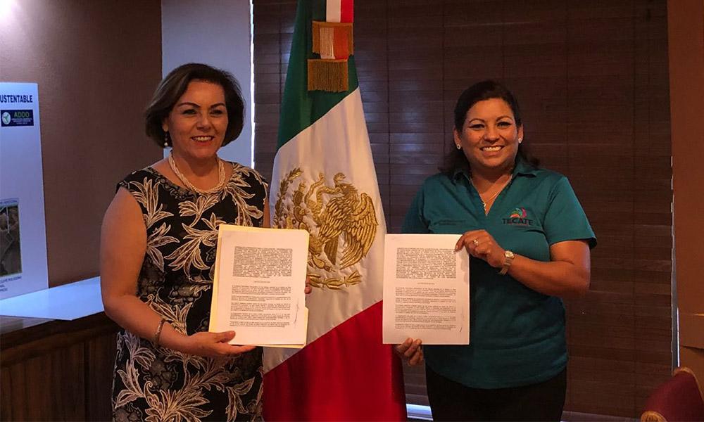 Signan convenio de ejecución del Programa Estatal de Forestación Urbana en Tecate