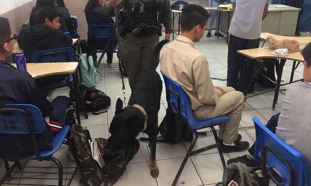 "Sorprenden a estudiantes con el operativo ""mochila segura"" en Tijuana"
