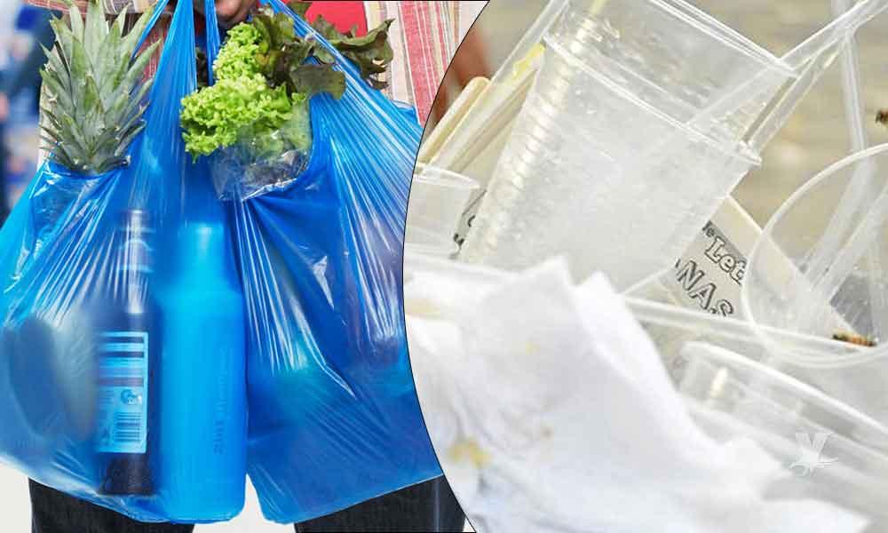 Ensenada busca prohibir el uso de bolsas y utensilios de plásticos desechables en establecimientos