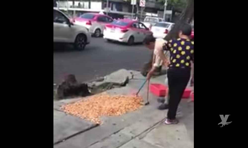 (VIDEO) Chinos sacan a secar camarones sobre banqueta de la CDMX