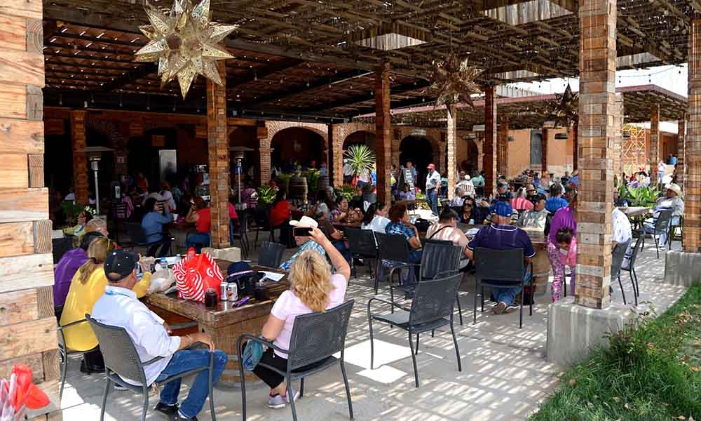 Visitan Valle de Guadalupe integrantes de Clubes de la Alegría de Playas de Rosarito