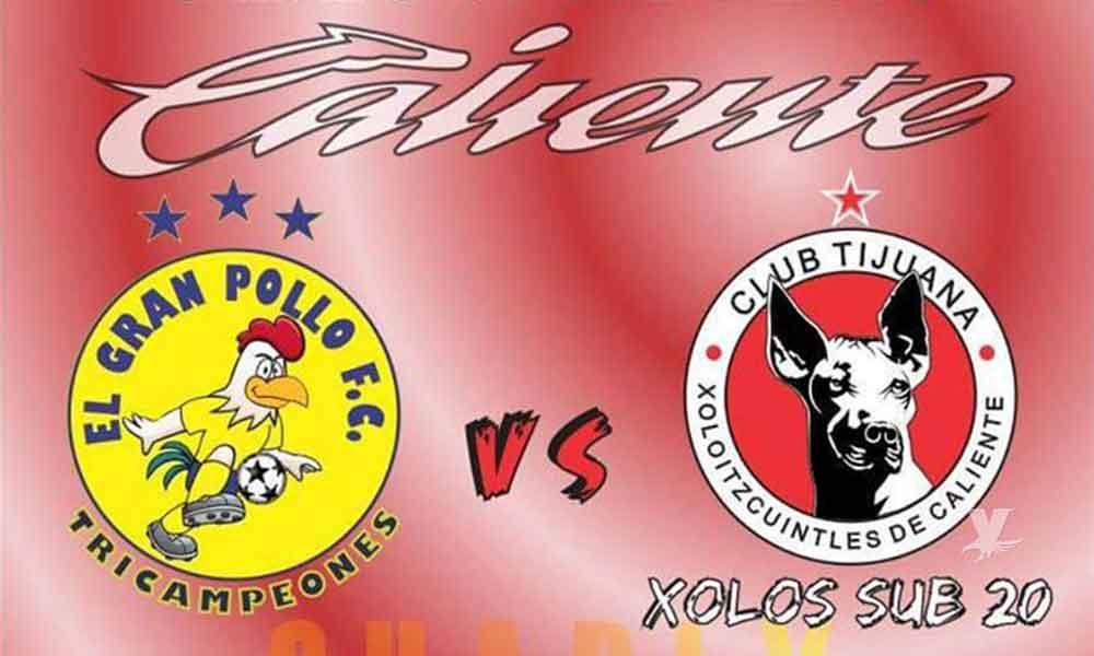 Enfrentará Xolos sub 20 a El Gran Pollo F.C. en Tecate
