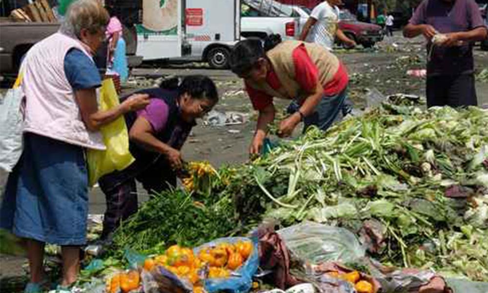 Alertan que en diez años el mundo desperdiciara 66 toneladas de alimento por segundo