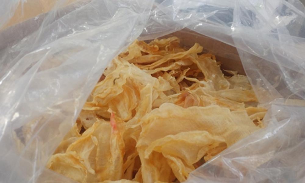 Asegura PROFEPA 16 buches de Totoaba en el área de paquetería del AICM
