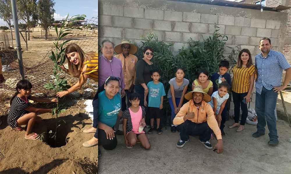 Fueron donados más de 60 árboles en coordinación con Protección al Ambiente: Regidora Diana Vázquez