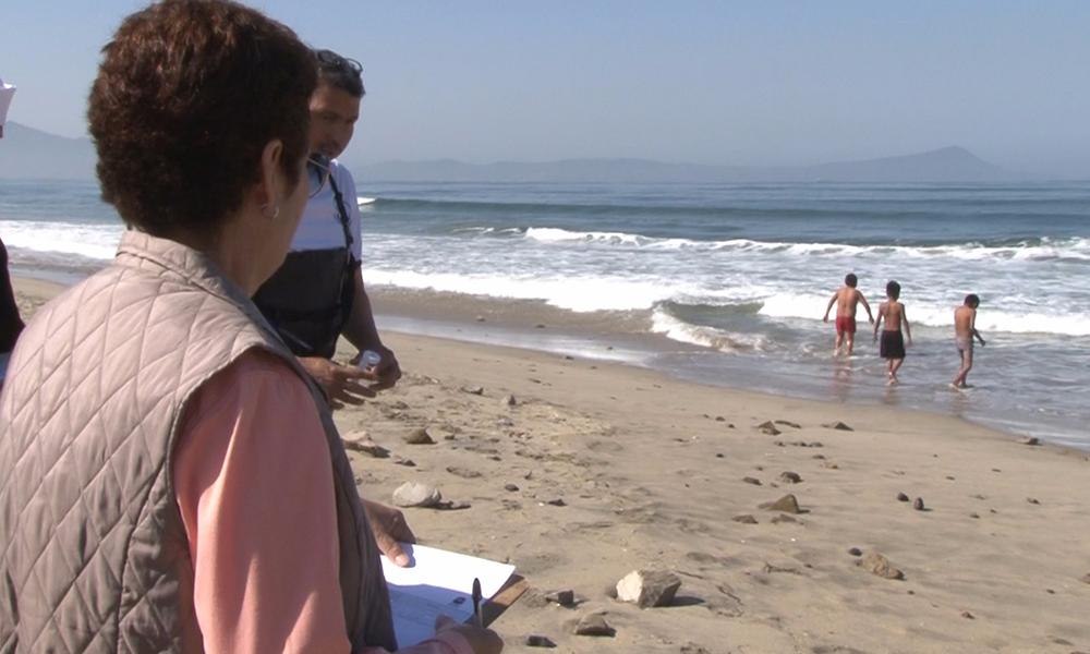 Emite Protección Civil de Ensenada medidas preventivas para evitar picaduras en las Playas