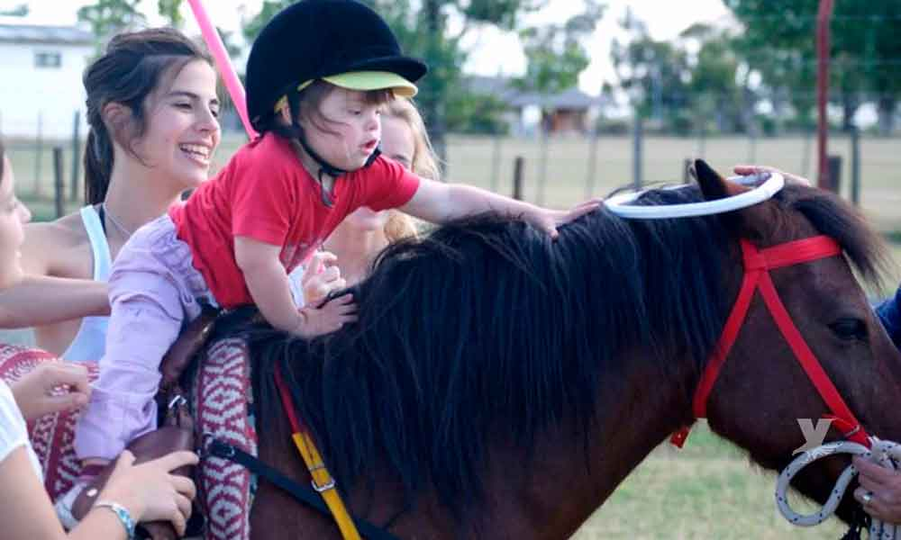 Beneficios de la equinoterapia en personas con discapacidades