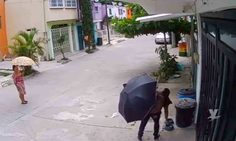 """(VIDEO) Mujeres robaron platos de agua a perro y la apodan """"LadyTrastes"""""""