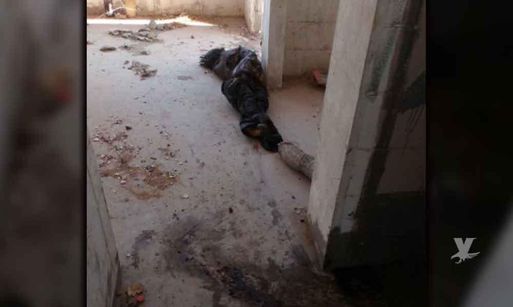 Encuentran cadáver devorado por perros y ratas en Mexicali