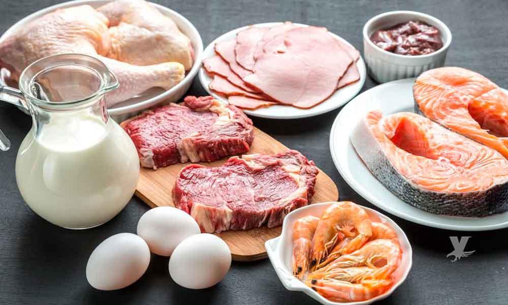 Comer proteína antes de dormir mejora tus resultados en el gimnasio