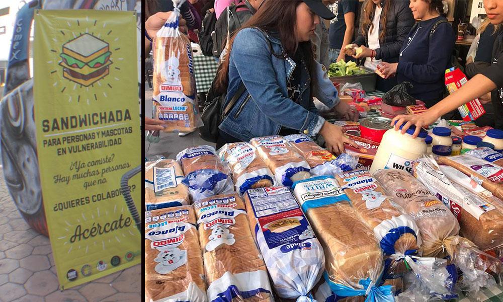Sandwichada: Tijuanenses se organizan para alimentar a más de mil personas en situación de vulnerabilidad